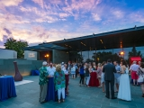 Spring Party 2016: Coney Island at the McNay