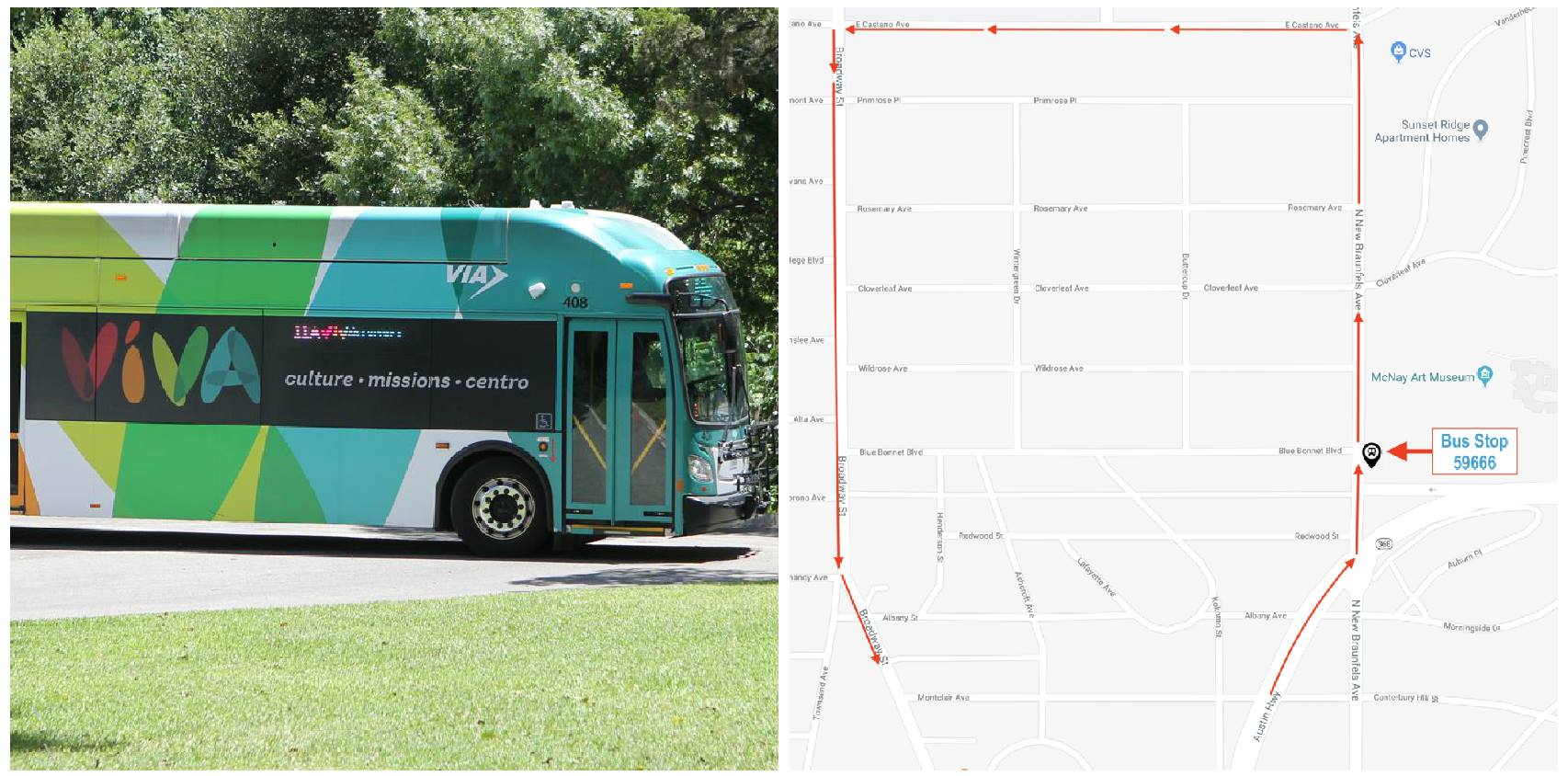 new via viva culture bus stop at mcnay | mcnay art museum