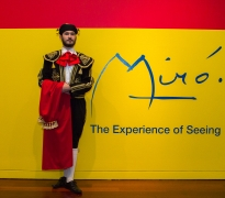 Member Opening Reception: Miró: The Experience of Seeing
